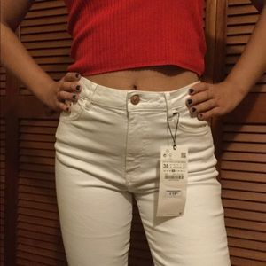 Zara - Pants Size 06 (NEW - With Tags)